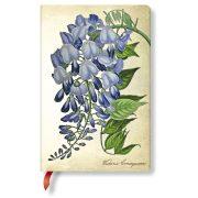 Paperblanks butikkönyv Blooming Wisteria mini vonalas