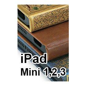 iPad Mini 1,2,3